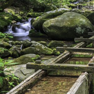 What Are the Different Types of Flumes?