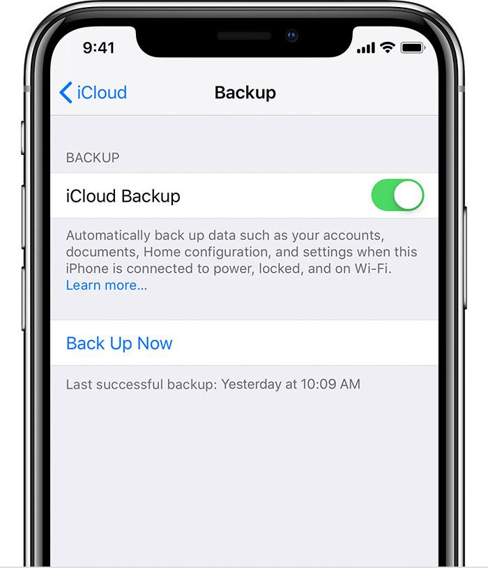iCloud Backup option