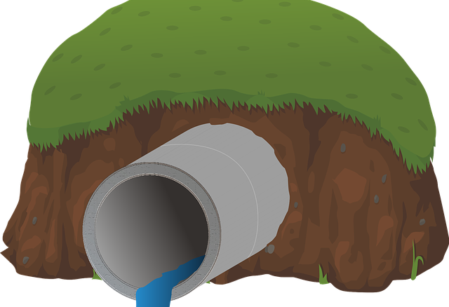 home sewage system
